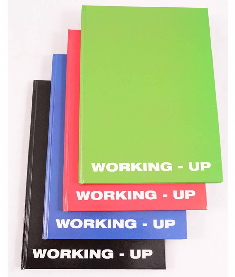 Registru A4 96f D WorkingUp culori mixte R/N/V/A RGA496DWUP-2.jpg