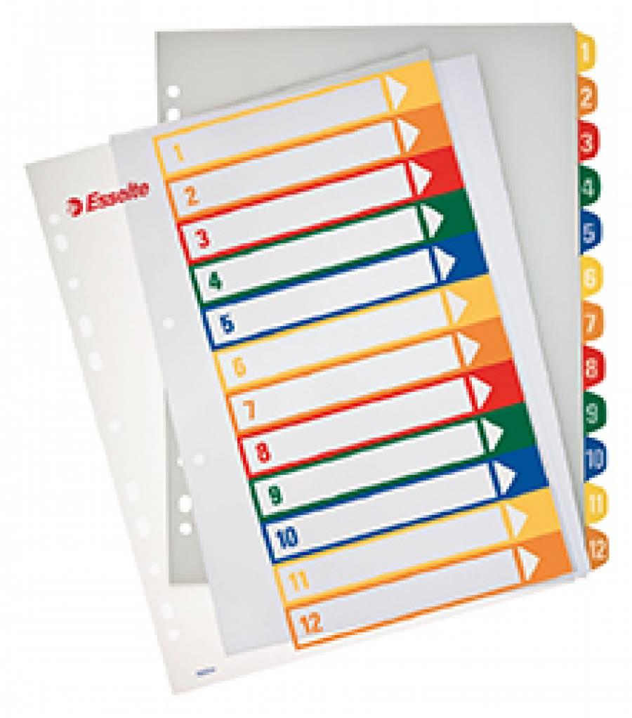 Separatoare Index Plastic Imprimabil Esselte